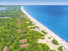 Jungle Beach by Uga